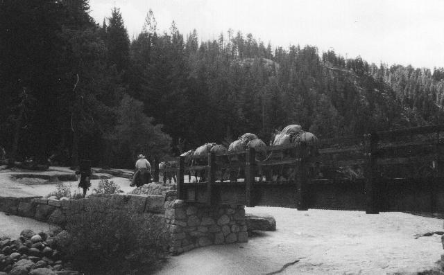 Yosemite Mule train (640x397)