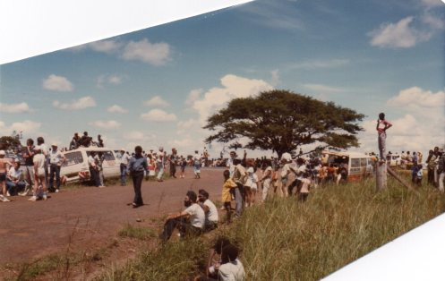 safari rally2