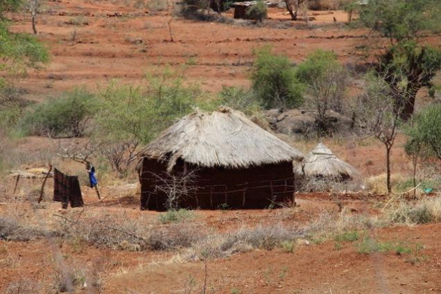 Kajuki2 hut