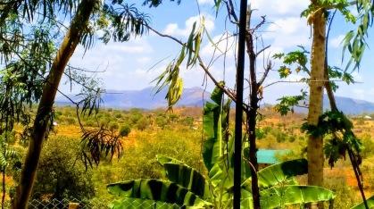 Kenya view1